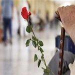 همکاری بین المللی محققان در پروژه «سلامت سالمندی» نیشابور