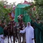 حضور امام رضا(ع) جاذبه ای ملی-مذهبی برای نیشابور