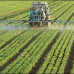 در کارگروه آب، کشاورزی ومنابع طبیعی نیشابور عنوان شد:  ظرفیت های واحدهای صنعتی به کمک تقویت کشاورزی بیاید