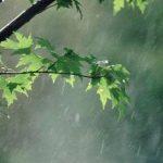 نیشابور در انتظار لبخند آسمان ; نیشابور امسال تا کنون80 درصد کاهش بارش داشته است