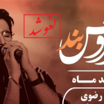 تحرکات تندروها، تمکین مقامات!  لغو مجوز قانونی کنسرت در دقیقه نود